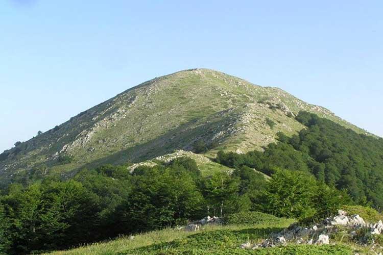 Ορειβατικός Πρέβεζας: Εξόρμηση στις πλαγιές του Κάμενικ_5e067917e7edc.jpeg