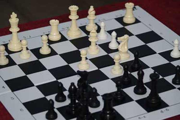 Πρέβεζα: Επιτυχίες μαθητών σε σχολικό πρωτάθλημα σκάκι_5e0682cb1e7e7.jpeg