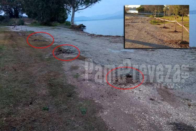 Πρέβεζα: Περισσεύει το θράσος – Ξερίζωσαν και εξαφάνισαν τα δέντρα που φυτεύτηκαν στο Ψαθάκι_5e069347ac9fe.jpeg