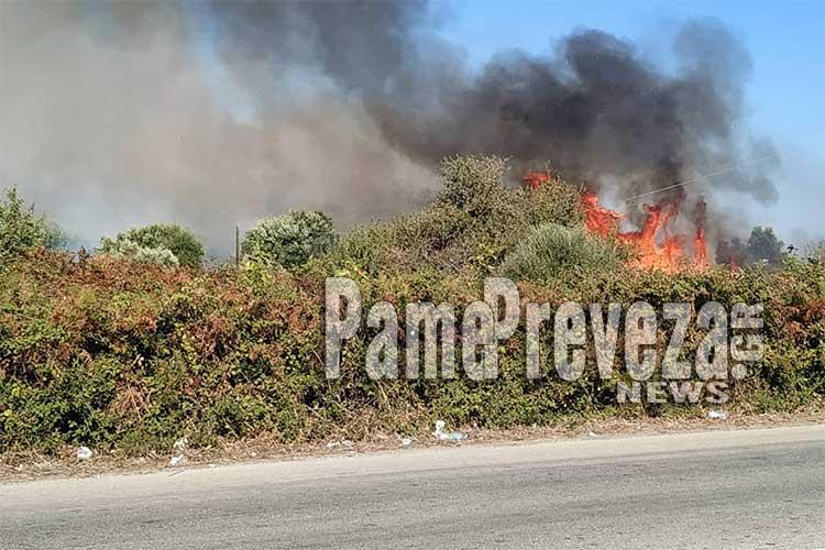 Σε εξέλιξη πυρκαγιά στην Πρέβεζα_5e04f80f62a03.jpeg