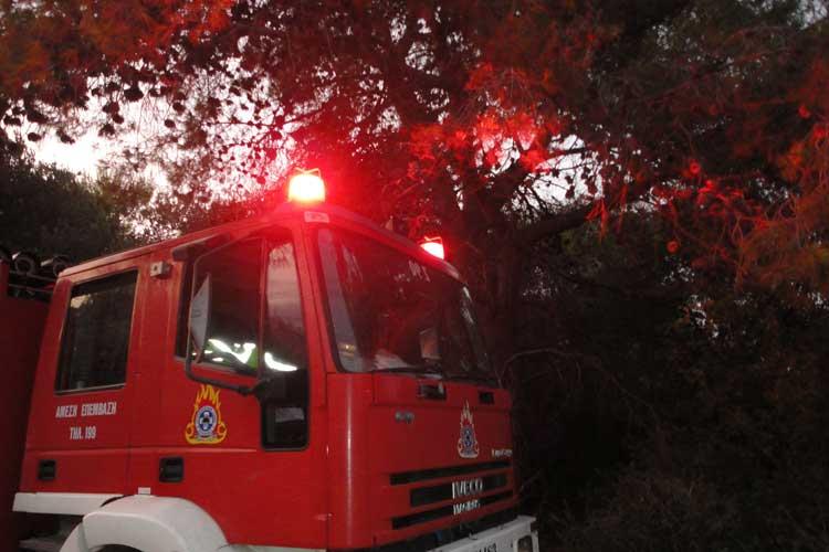 Υψηλός ο κίνδυνος εκδήλωσης πυρκαγιάς για σήμερα στην Ήπειρο – Σε κατηγορία κινδύνου 4 τα Ιόνια Νησιά_5e04fed10f07d.jpeg