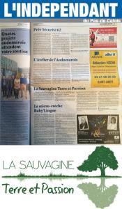 L  Independant du Pas De Calais