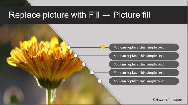fresh-powerpoint-template-picture-slide