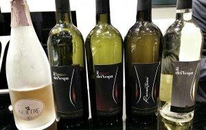 vini di Bruno Vespa