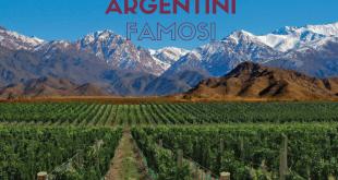 vini argentini tipici famosi pregiati da mendoza