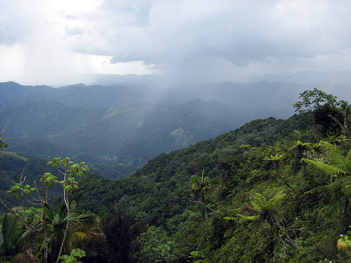 Primera Hora De Puerto Rico
