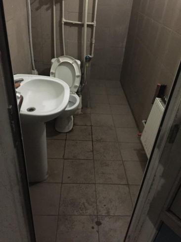 tualet 2