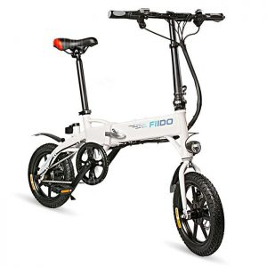FIIDO D1 Moped Bicycle