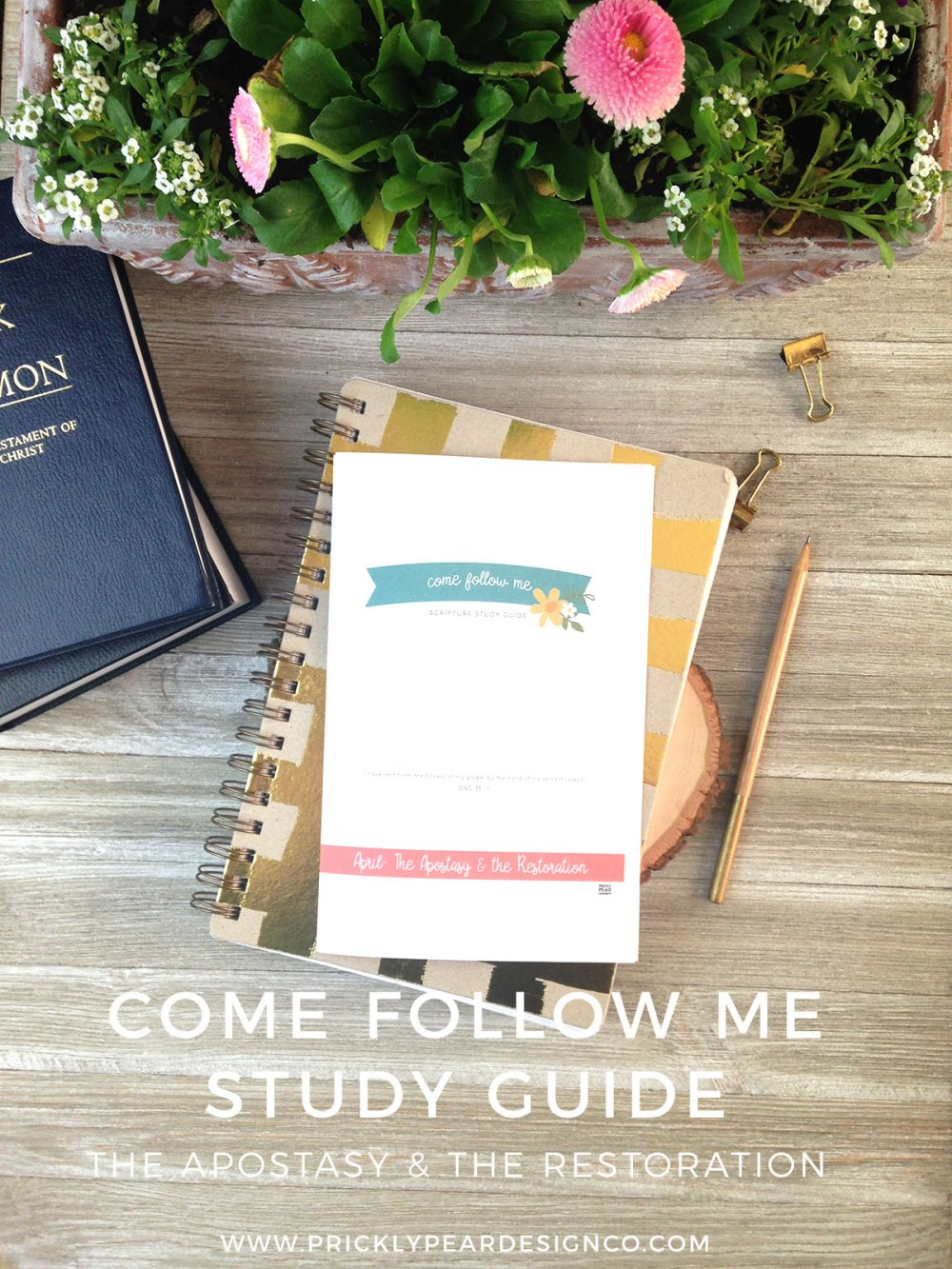 Come Follow Me Scripture Study Guide | April - The Apostasy & The Restoration| LDS | Young Women | LDS Printables | Prickly Pear Design Co.
