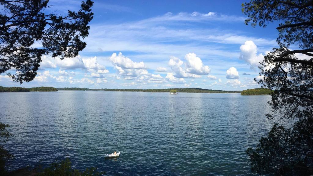Percy Priest Lake
