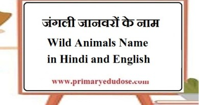 Wild Animals Name in Hindi