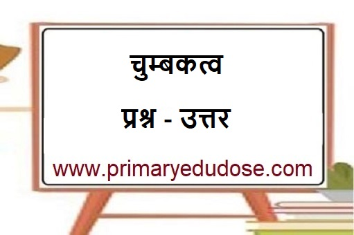 Magnetism Questions In Hindi