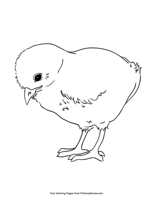 Baby Chicken Coloring Page Free Printable Pdf From Primarygames