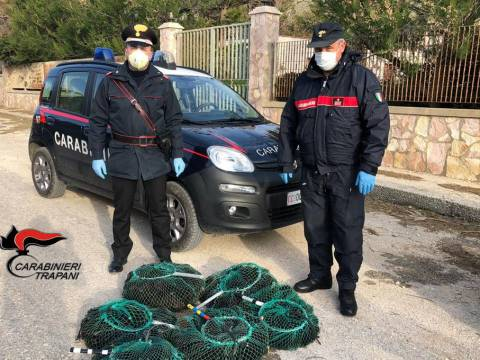Trapani, pesca illegale ricci di mare