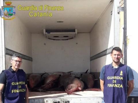 Cronaca Catania, sequestro tonno rosso