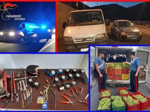 Rubate tonnellate di uva (anche a coltivatore di Caltagirone) tra Licodia Eubea e Mazzarrone, 6 arresti