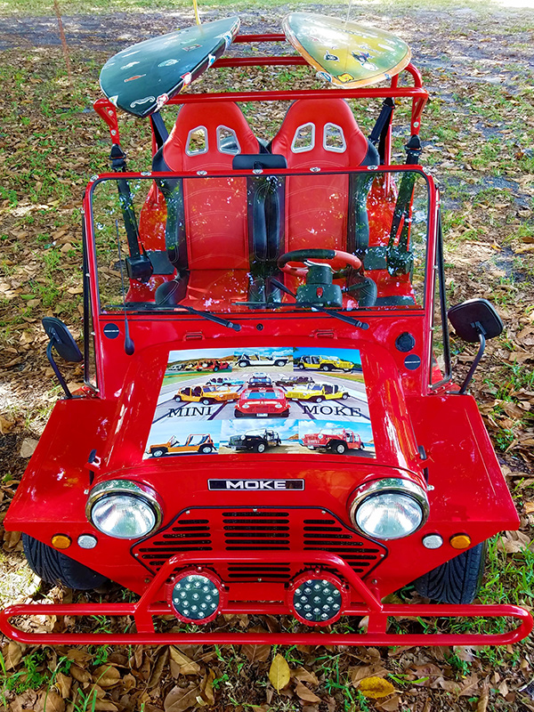view of a moke golf car from above