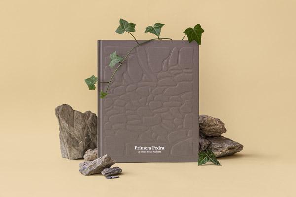 llibre pedra seca