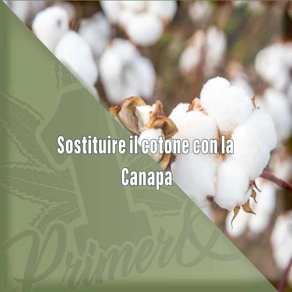 Sostituire il cotone con la Canapa