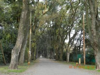 Parque Leloir