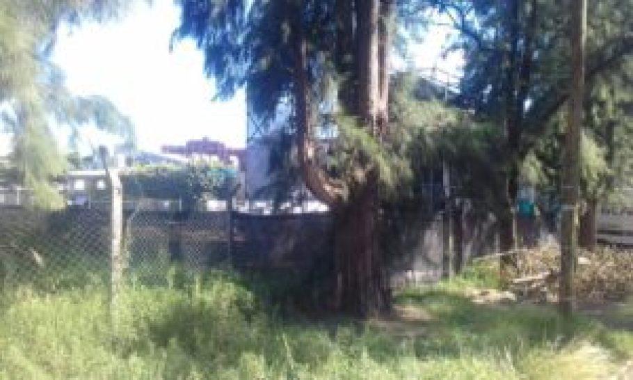 Fiesta clandestina en Ituzaingó