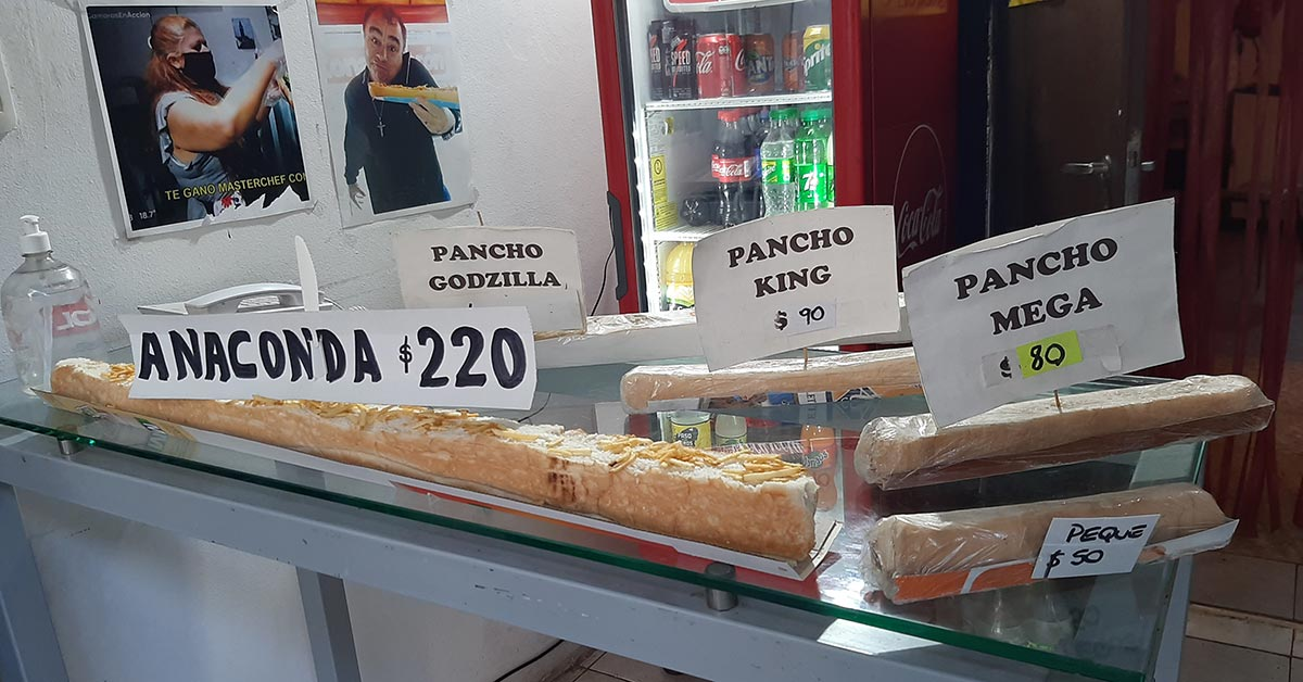 pancho anaconda la Italiana