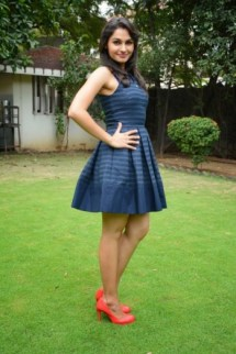 Some Lesser Known Facts About Andrea Jeremiah