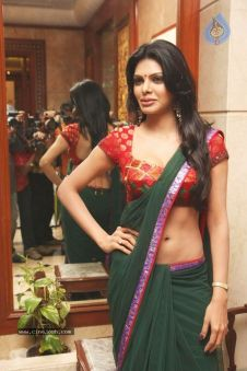 Some Lesser Known Facts About Sherlyn Chopra