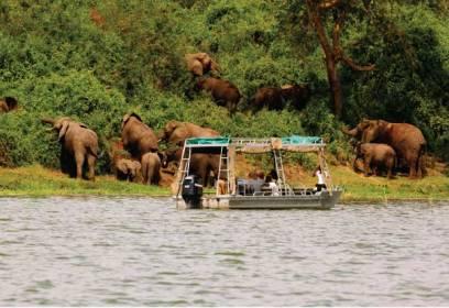 Boat cruise in Lake Mburo National Park Uganda tour