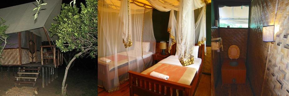 Bush Lodge - accommodation in queen elizabeth np