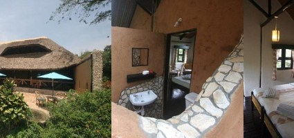 Chimps Nest - accommodation in kibale np
