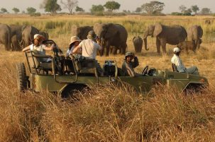 7 days Uganda wildlife safari Murchison Falls & Kidepo Valley National Park tour