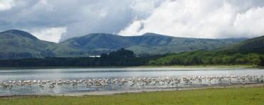 Lake Naivasha-kenya-tours