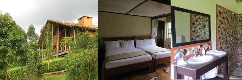 Mahogany Springs Camp - accommodation in bwindi np