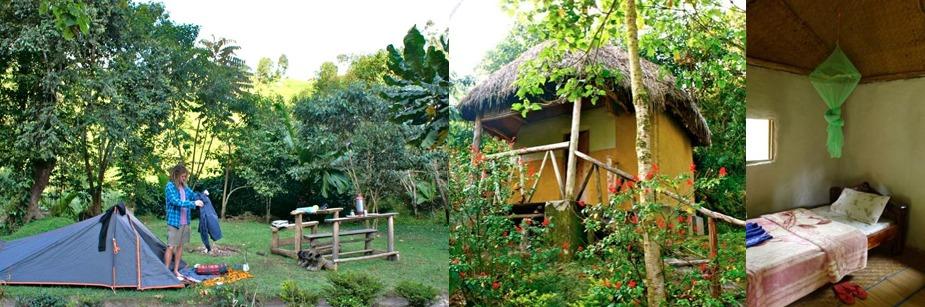 Nshongi camp - budget accommodation in bwindi np