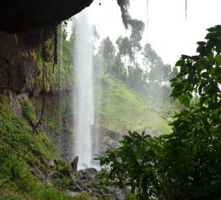 Uganda Tour, 8 Days Uganda safari tours with Prime Uganda Safaris & Tours