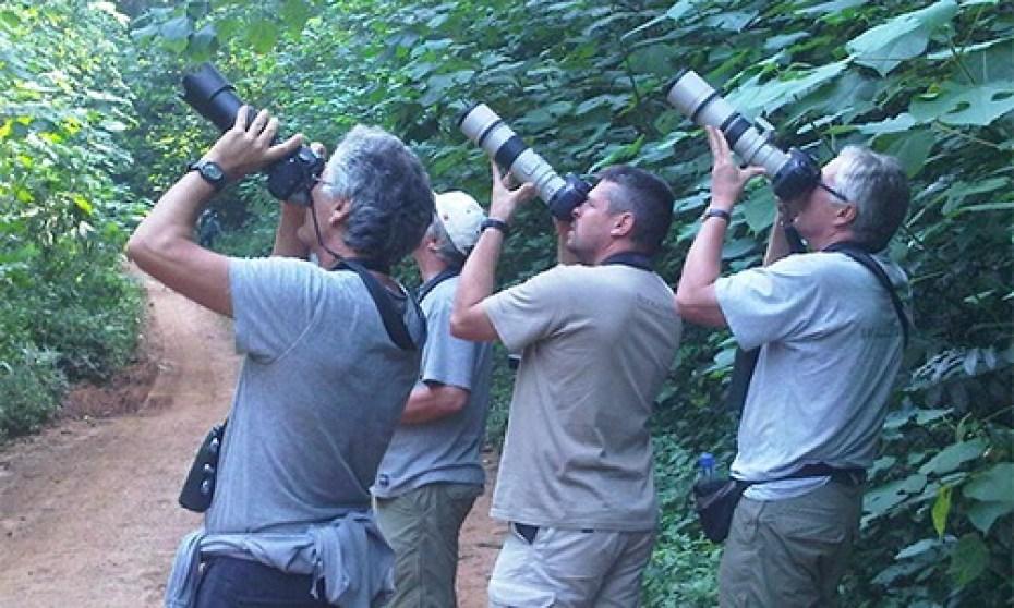 7 Days bird watching tour Uganda Semuliki and kibale National Park