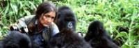 dian-fossey-rwanda-safari