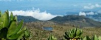 mount elgon uganda safari
