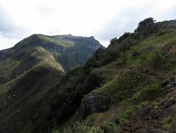 14 days Uganda Mountain climbing Safari in Mt. Rwenzori