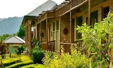 silver-back-lodge-bwindi