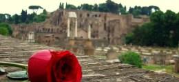 Włoski dla odważnych!