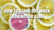 How To Stand Out When Looking For A Job