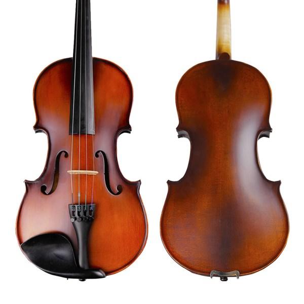 Strumenti 2500 violin