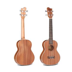 AKUA Rain Tenor ukulele
