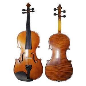 Strumenti a corde 3500 violin