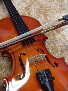 Pikanni P1000 Student violin