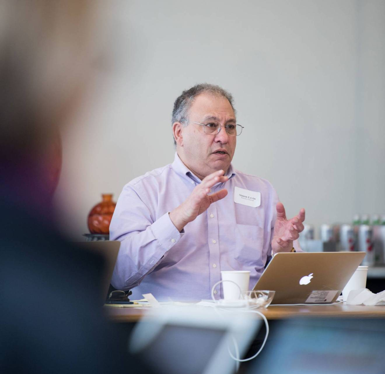Simon Levin at Earth in 2050 workshop