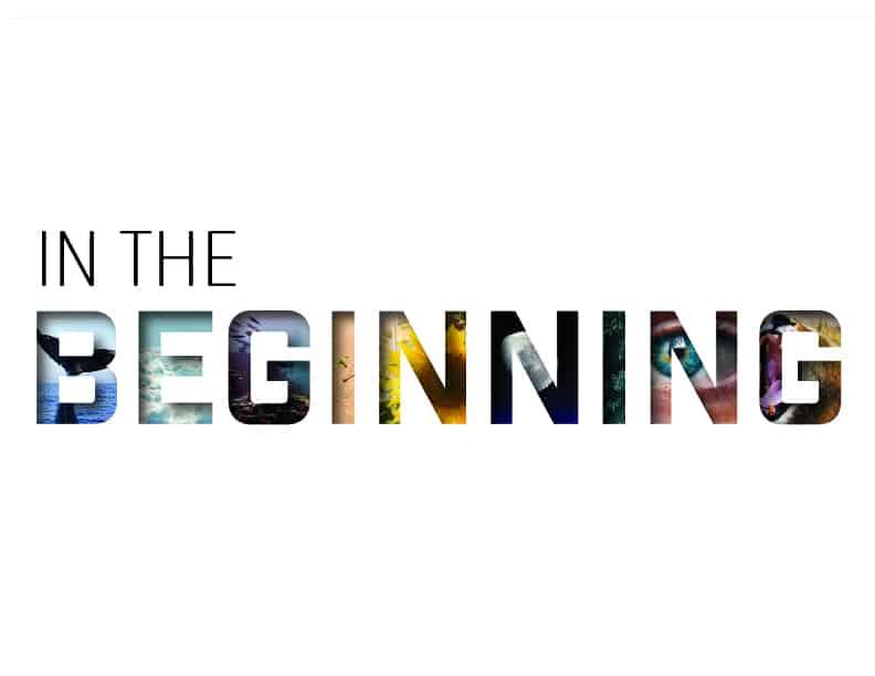 in the beginning slide-01