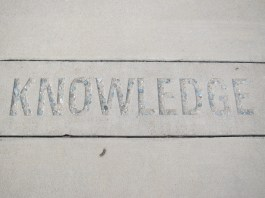 "A photograph of the word ""knowledge engraved in white sandstone"